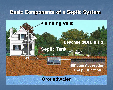 Harold3finley65 on for Septic tank plumbing problems